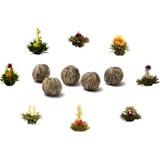 Assortiment de 8 fleurs de thé