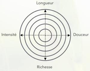 Profil gustatif du thé