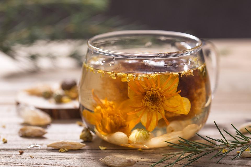 Acheter des fleurs de thé pas chères