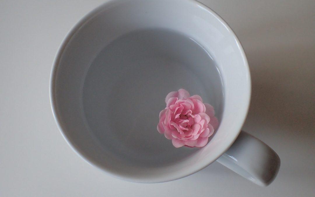 Lavez vos tasses à thé avec un produit vaisselle fait-maison