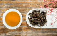 Thé noir : histoire, bienfaits, fabrication et préparation