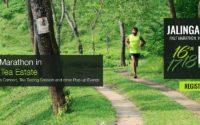 Fan de course à pied ? Que direz-vous d'un marathon dans une plantation de thé