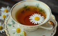 Tisanes et infusions : bien choisir, bien préparer, bien déguster