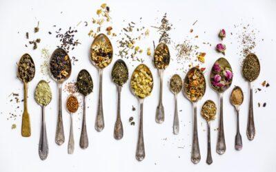 Cuillère à thé : quel dosage et quel modèle choisir ?