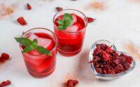 Infusion d'hibiscus : tous les bienfaits et sa préparation