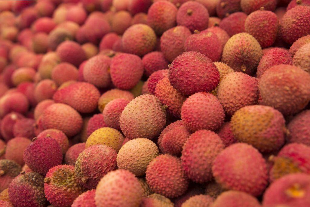 fruit exotique Europe litchi