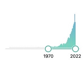 courbe du nombre de publications sur la cannelle